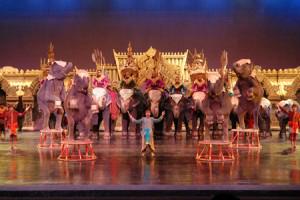 phuket-fantasea-show-and-dinner-2-300x2001