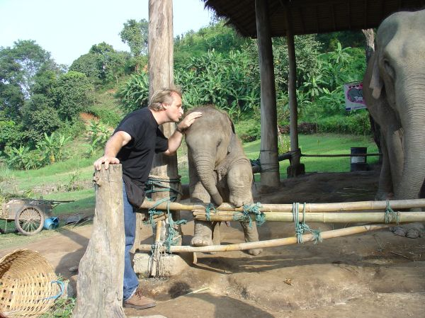 Elefantenkinder Hautnah...